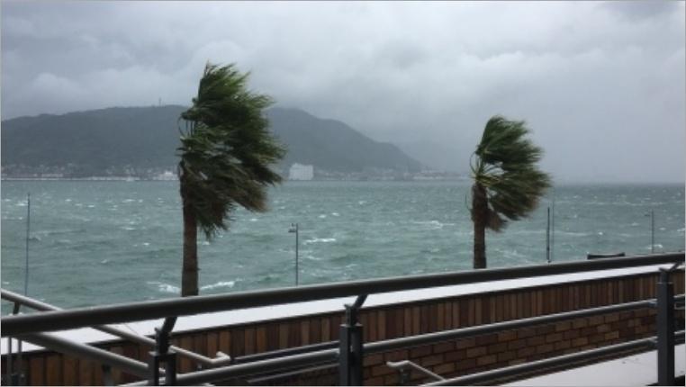 大分県の台風情報をいち早く知る方法は?