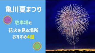 【2021年最新版】別府亀川夏祭りの駐車場は?花火のおすすめスポット4選も!